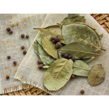 Tej Patta - Bay Leaf (1 kg pouch)